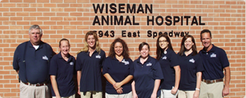 Pet Dentistry Tucson Pet Clinic