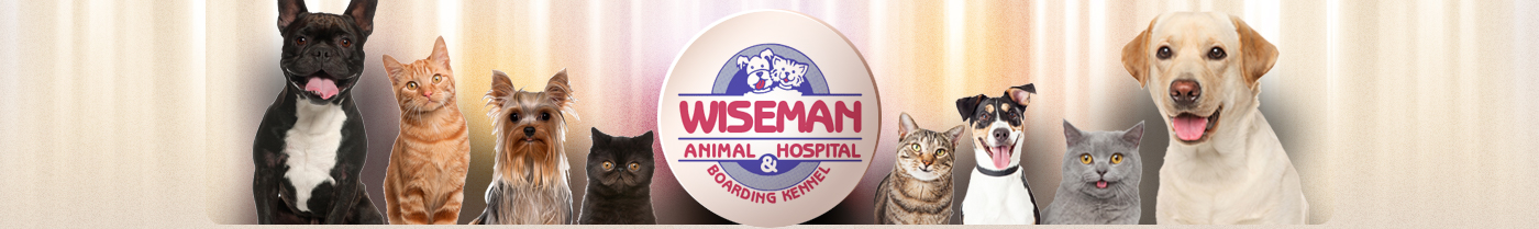 Wiseman Animal Hospital and Boarding Kennel